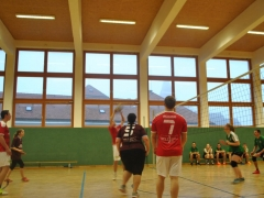 Bezirks-Volleyball 16