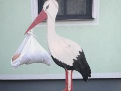 Storch aufstellen 20